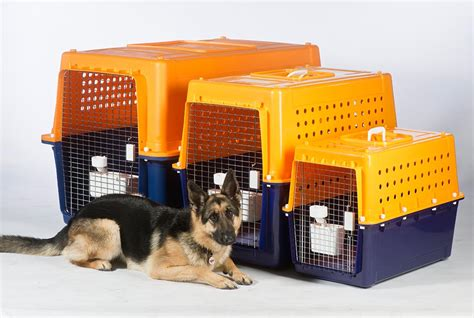 Book Crate Hire Today | Jetpets Animal Transport