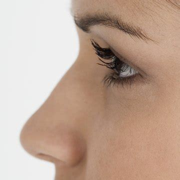 How to Use Makeup to Cover a Bump on the Nose | Synonym